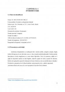 Analiza sistemului logistic al întreprinderii SC Arc-Food 2015 SRL-D - Pagina 3