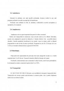 Analiza sistemului logistic al întreprinderii SC Arc-Food 2015 SRL-D - Pagina 5