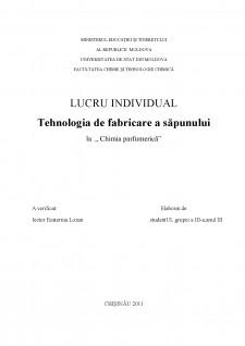 Tehnologia de fabricare a săpunului - Pagina 1