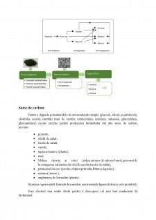 Biobutanol - Pagina 4