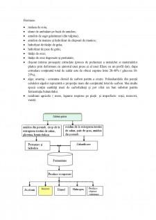 Biobutanol - Pagina 5