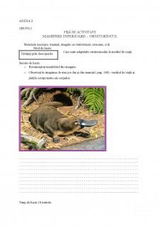 Proiect didactic - ornitorincul - Pagina 1