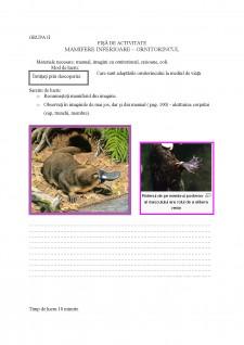 Proiect didactic - ornitorincul - Pagina 2