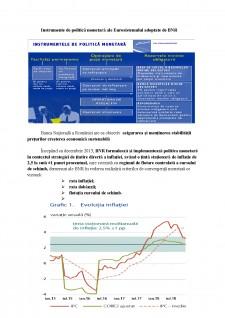 Politica monetară a BNR - Pagina 2