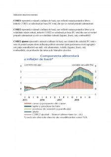 Politica monetară a BNR - Pagina 3