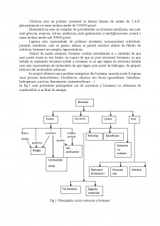 Biocombustibili - Pagina 4