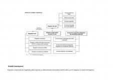 Structura bugetului public național (BPN) și relațiile interbugetare - Pagina 4