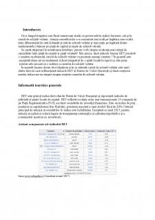 Corelația dintre indicele BET și cursul de schimb valutar - Pagina 4