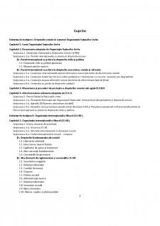 Protecția internațională a drepturilor omului - Pagina 2