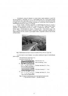 Îmbrăcăminți rutiere rigide - Pagina 5