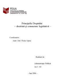 Principiile Dreptului - Pagina 1