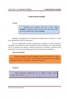 Contract de mandat - Pagina 1