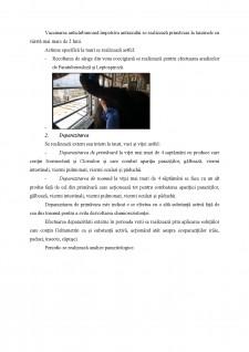 Eventualele boli parazitare, tratamente și recomandări la taurine - Pagina 2
