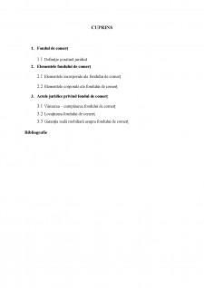 Fondul de comerț - Pagina 2