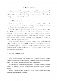 Fondul de comerț - Pagina 3