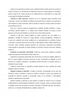 Fondul de comerț - Pagina 5