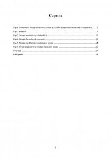 Modele si structuri privind situatiile financiare anuale, conform IAS 1 - Situatii financiare anuale si Directiva 34-2013 - Pagina 2