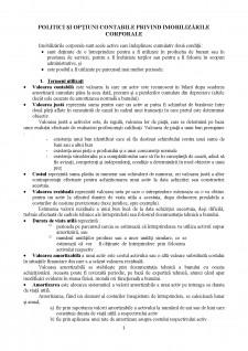 Politici și opțiuni contabile privind imobilizările corporale - Pagina 1
