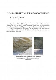 Modificări ale serviciilor ecosistemice - analizate la nivelul Depresiunii Vulcana Băi - Pagina 3