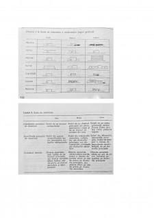Semnificații în spațiul public urban - Pagina 4