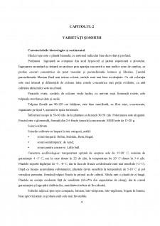 Sfecla roșie - Pagina 4