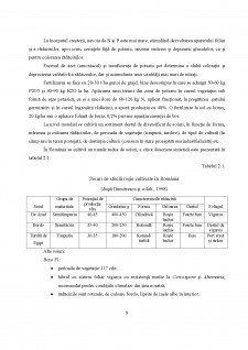Sfecla roșie - Pagina 5