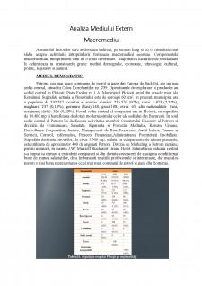 Analiza Mediului Extern - Pagina 1