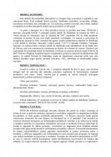 Analiza Mediului Extern - Pagina 2