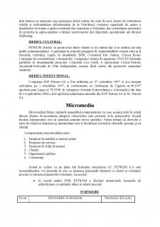 Analiza Mediului Extern - Pagina 3