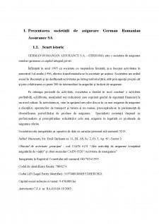 Evaluarea activității unei societăți de asigurare. studiu de caz German Romanian Assurance SA - Pagina 3