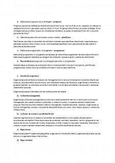 Bazele managementului - Pagina 2