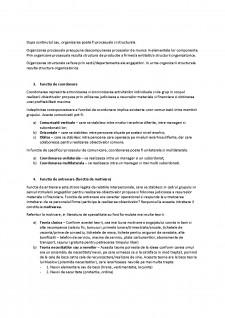 Bazele managementului - Pagina 3