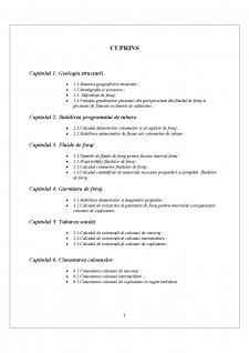 Proiectarea programului de construcție al unei sonde în foraj pe structura Boldesti - Pagina 2