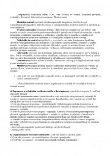 Sisteme de Control Intern - Test de aprofundare a cunoștințelor - Pagina 2
