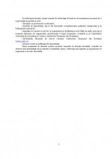 Probele în auditul financiar - Pagina 3