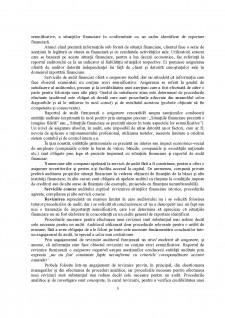 Probele în auditul financiar - Pagina 5