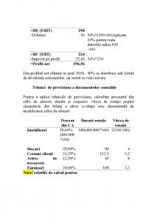 Construirea bilanțului și contului de profit și pierdere previzionate - Pagina 2