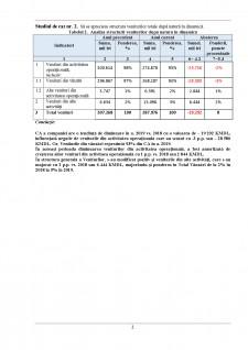 Studiu de caz analiza economico-financiară - Pagina 2