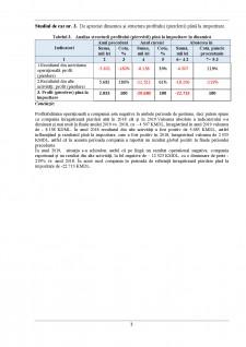 Studiu de caz analiza economico-financiară - Pagina 3