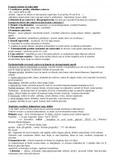 Examen exterior al cadavrului - Pagina 1