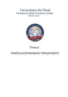 Analiza performanțelor întreprinderii - Pagina 1