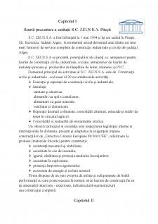 Analiza performanțelor întreprinderii - Pagina 2