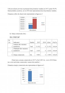 Analiza performanțelor întreprinderii - Pagina 4
