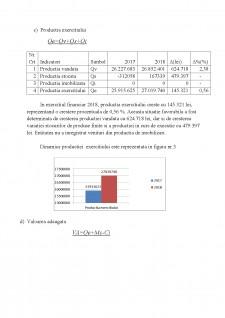 Analiza performanțelor întreprinderii - Pagina 5