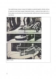 Studiu asupra arborilor principali și tehnologii de fabricare - Pagina 5