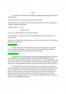 Finanțe Internaționale - Pagina 1