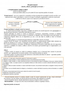 Conspect dreptul muncii - Pagina 1
