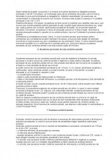 Desfășurarea urmăririi penale - Pagina 3