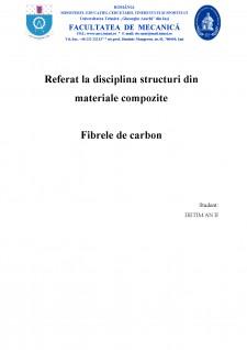 Fibre de carbon - Pagina 1