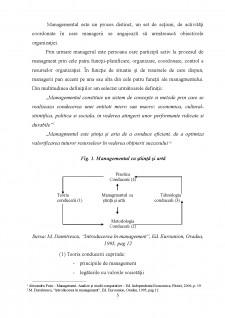 Rolul managerului în creșterea performanțelor organizațiilor - Pagina 5